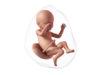 39 semanas de embarazo