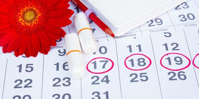 Ciclo menstrual quedar embarazada