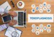 Toxoplasmosis síntomas efectos prevención